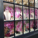 Window Vinyls | Winsor Bishop Cambridge